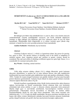 MÜRDÜMÜĞÜN (Lathyrus ssp ) HAYVAN
