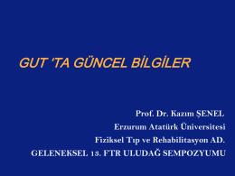 Akut gut atağı tedavisi - Geleneksel 13. FTR Uludağ Sempozyumu