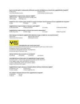 FİZ 103C Çalışma Soruları