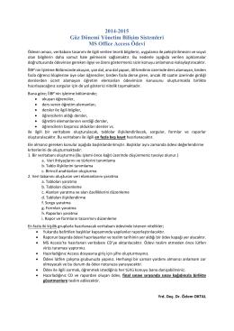 2014-2015 Güz Dönemi Yönetim Bilişim Sistemleri MS Office