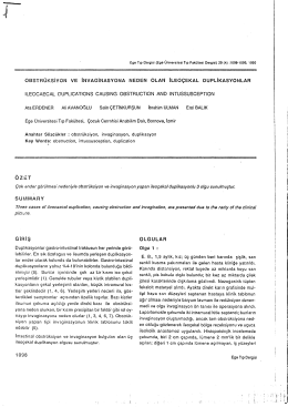 Erdener A, Avanoğlu A, Çetinkurşun S, Ulman İ, Balık E