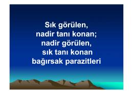 Türkçe bilim dili olabilir mi?