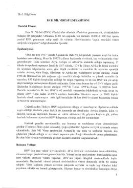 BATI NiT, VINUSU ENFEKSIYONU Batt Nil Virtisti (BNV) Flaviviridae