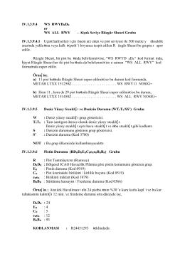 IV.1.3.9.4 WS RWYDRDR or WS ALL RWY