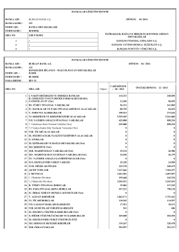 Mali Olmayan Ortaklıklar Dahil Konsolide Finansal