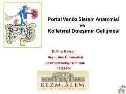 Portal Venöz Sistem Anatomisi ve Kolleteral Dolaşımın Gelişmesi