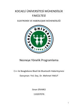 İndir (PDF, 1.13MB)