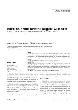 Brusellozun Nadir Bir Klinik Bulgusu: Akut Batın