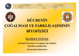 1-DIFFER-TURKCE-2014.ppt [Uyumluluk Modu].
