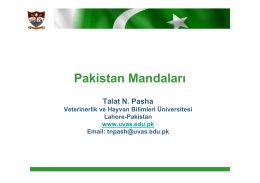Pakistan Mandaları