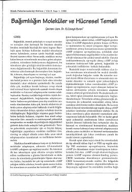 bağımlılığın Moleküler ve Hücresel Temeli