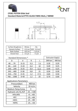 CPS81 PISTON Glide Seal Standard Material:PTFE+GLASS FIBRE+