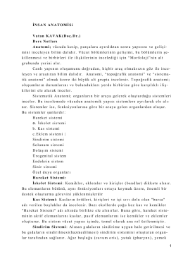 1 İNSAN ANATOMİSi Vatan KAVAK(Doç.Dr.) Ders Notları Anatomi