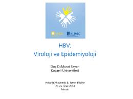 HBV - Klimik
