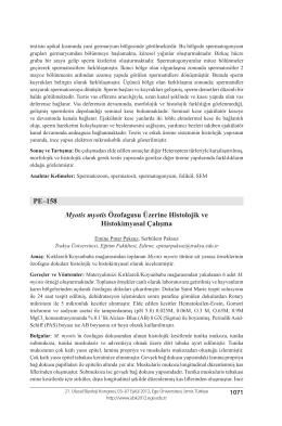 Myotis myotis Özofagusu Üzerine Histolojik veHistokimyasal Çalışma