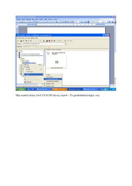Shp uzantılı dosya ArcCATALOG da seç export—To geodatabase