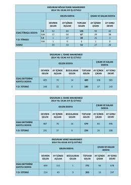 erzurum bölge idare mahkemesi 2014 yılı ocak ayı iş cetveli gelen