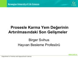 Prof. Dr. Birger SVIHUS