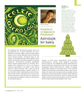 Kelt Astrolojisi