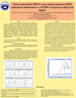 Meme kanserinde PIK3CA gen mutasyonlarının HRM yöntemiyle