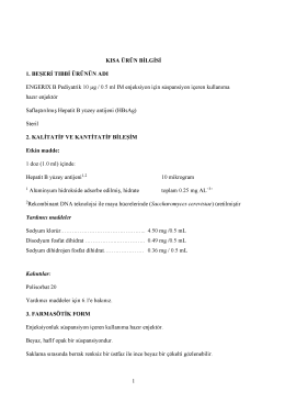 11042014_cdn/engerix-b-pediyatrik-10-mcg05-ml-im