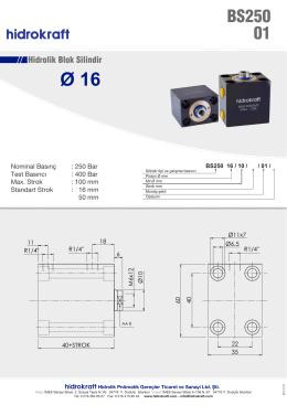 BS250 01 Seri