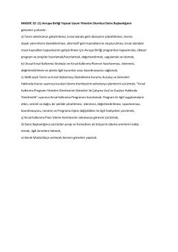 MADDE 32- (1) Avrupa Birliği Yapısal Uyum Yönetim Otoritesi Daire