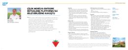 Çilek Mobilya SAP BPC Projesi