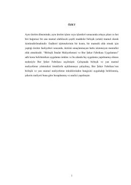Birleşik ve Yan Ürün Maliyetlemesi ve Bor Şeker Fabrikası Uygulaması