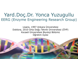 Assist. Prof. Dr. Yonca Yüzügüllü - Middle East Technical University