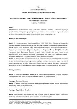 T.C. NEVŞEHİR VALİLİĞİ İl Kadın Hakları Koordinasyon Kurulu