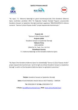Samsun İşgücü Piyasası Analizi - Orta Karadeniz Kalkınma Ajansı