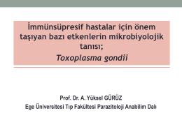 Yüksel GÜRÜZ - Ankara Mikrobiyoloji Derneği