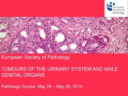 European Society of Pathology TUMOURS OF THE URINARY