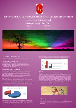 PDF Belgesi - Hacettepe Üniversitesi
