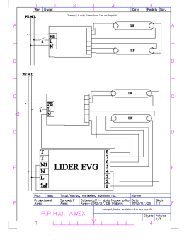 Lider EVG ile 2 x Lamba 6 Uçlu Elektronik Balastların