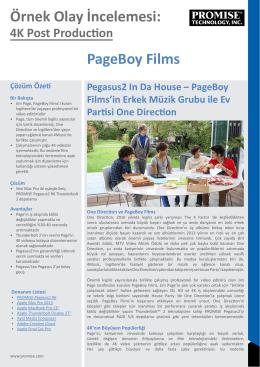 Örnek Olay İncelemesi: PageBoy Films