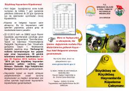 Küpelenmesi - Giresun İl Gıda Tarım ve Hayvancılık Müdürlüğü