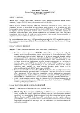 Doktora Sonrası Araştırma Programı (DOSAP) Uygulama Yönergesi