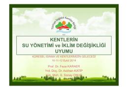 Prof.Dr. Feza KARAER - Türkiye Sağlıklı Kentler Birliği