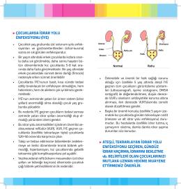 çocuklarda idrar yolu enfeksiyonu (iye)