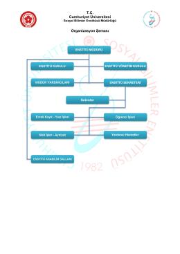 T.C. Cumhuriyet Üniversitesi Organizasyon Şeması