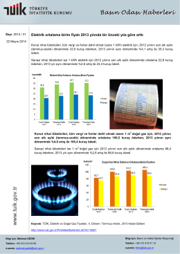 Elektrik ortalama birim fiyatı 2013 yılında bir önceki yıla göre arttı