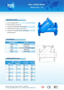 63 Ball check valve