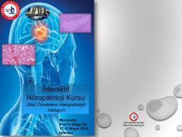 İnteraktif Nöropatoloji Kursu