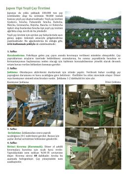 Japon Tipi Yeşil Çay Üretimi