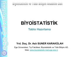 4. Tablo Hazirlama_AS - Biyoistatistik ve Tıbbi Bilişim Anabilim