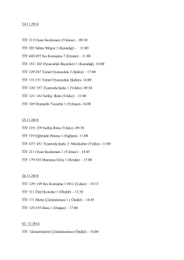 24.11.2014 TİY 313 Oyun İncelemesi (Yılmaz)