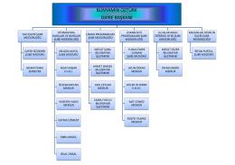 Yönetim Şeması
