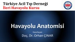 Havayolu Anatomisi